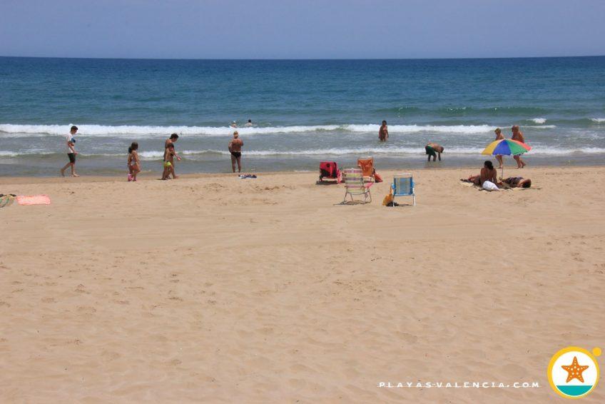 plaża pies